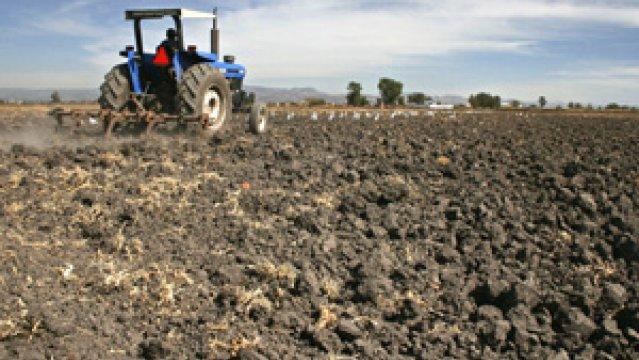 La renta de la tierra el blog de abel - Preparacion de la tierra para sembrar ...