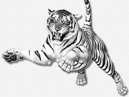 tigre saltando