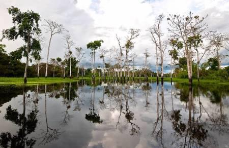 rios-amazonicos